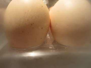 egg-smooch-by-akwelle-vallis
