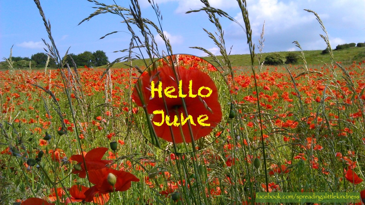 Kindness Calendar: June 2017