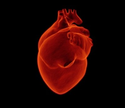 Here Are the Reasons Why You May Need an Echocardiogram