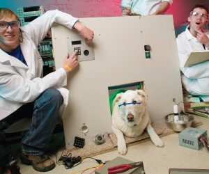 Automated Doggy Door