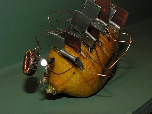 The elder lemon joule thief