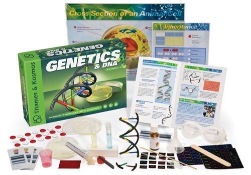 DNA Paternity test collection kit and DNA geek round up