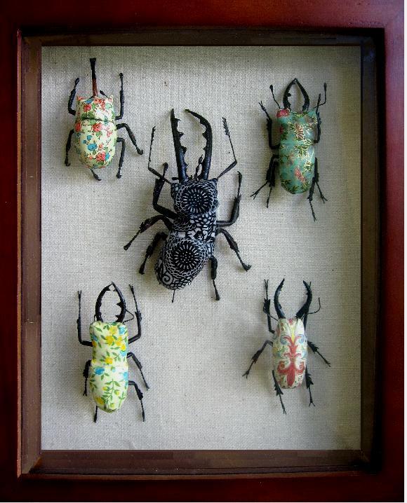 Jennifer Khoshbin's Bugs