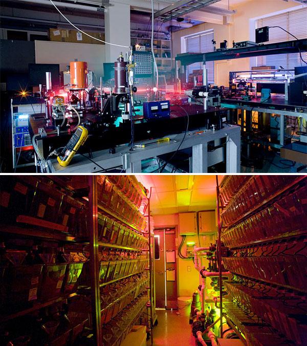 Scientific laboratories at night