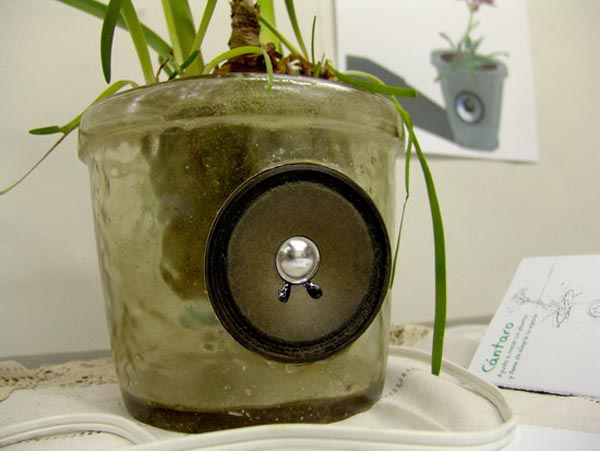 Flower vase provides a soundtrack to the current state of the plant it holds