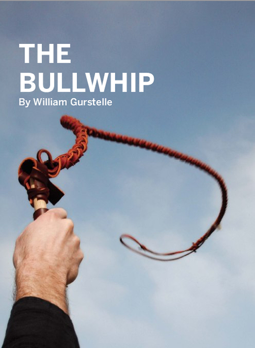 Weekend Project: The Bullwhip (PDF)