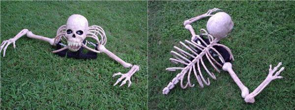 Creepy crawling skeleton
