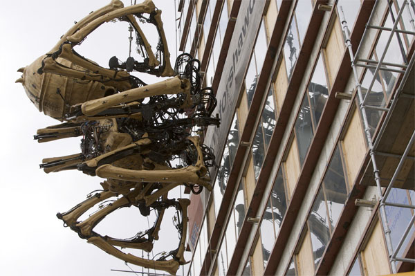 Giant spider dormant in Liverpool …