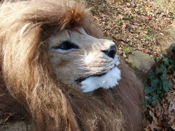 Lion mask Instructable
