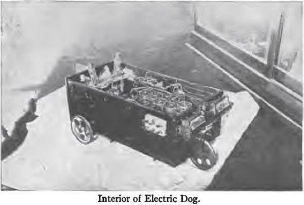 Seleno, The Electric Dog