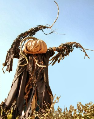 DIY Halloween : The Scarecrow from Hell