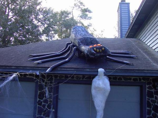 Giant roof spider