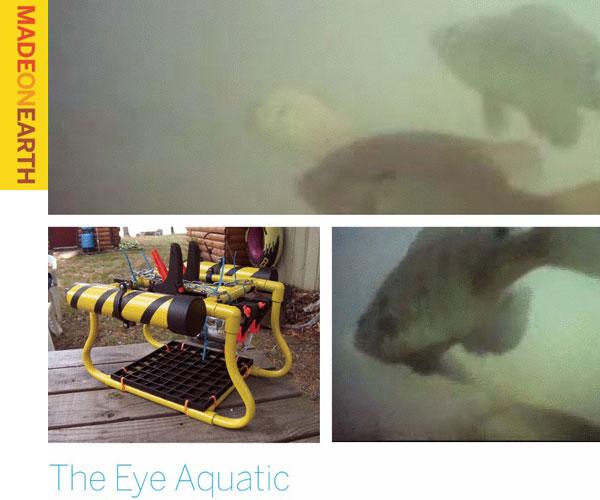 The Eye Aquatic