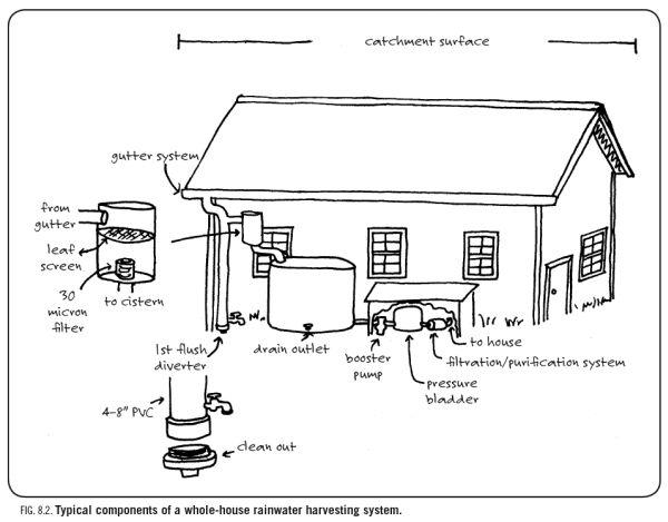 Rainwater catchment basics