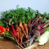Image (1) veggies.jpg for post 61560