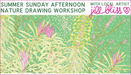 Jill Bliss' Summer Sunday Afternoon Nature Drawing Workshops in June