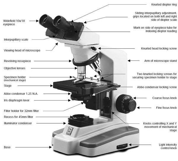 binocular compound microscope diagram lennox heat pump wiring image (2) compound-microscope-parts.jpg for post 68193 | make: diy projects and ideas makers