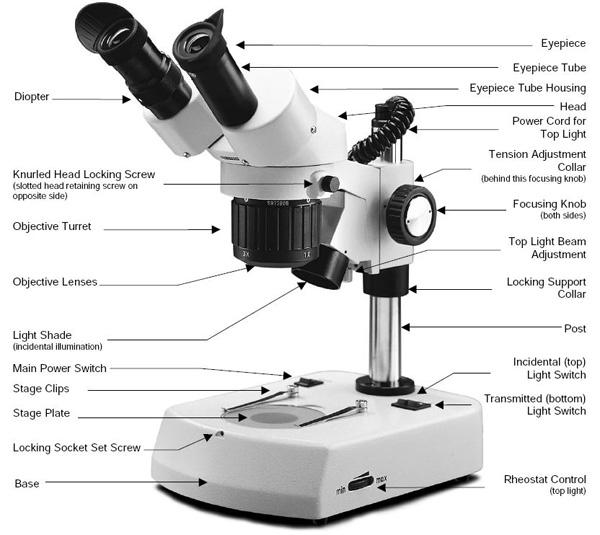 stereo-microscope-parts.jpg