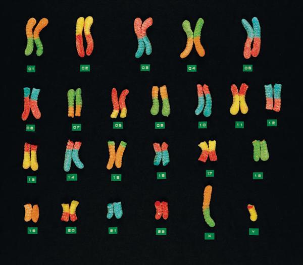 Gummy chromosomes and Cantor set eggs