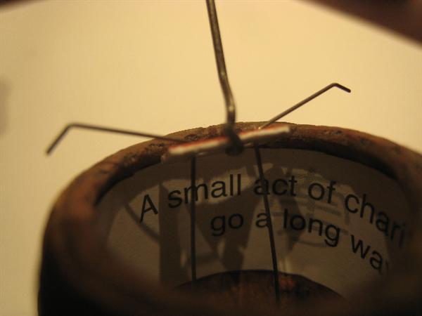 Jonathan Wolfe's puzzle acorns