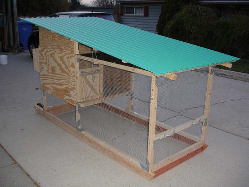 How-To: City Dweller Chicken Tractor