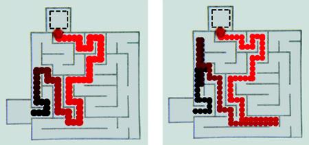 Maze-traversing oil drops