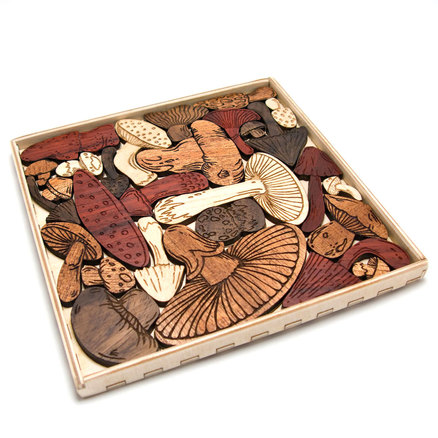 In the Makers Market: Mysterious mushroom puzzle