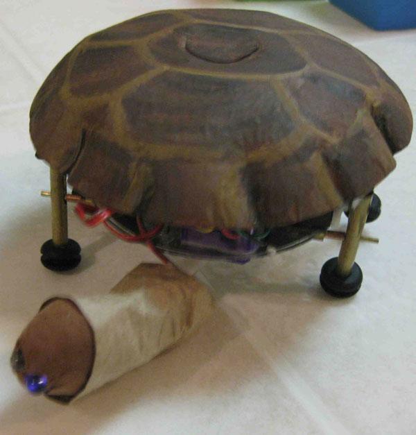Tortellini the Turtle Bot