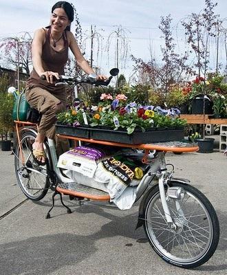 Impressive collection of cargo bikes