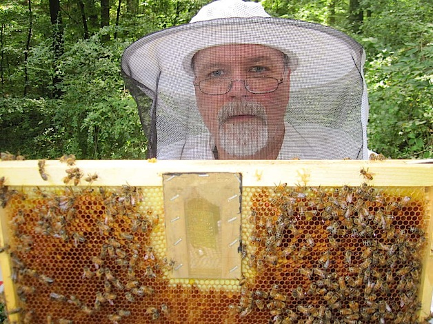 How-To: Bee hive scale, weigh yours for science