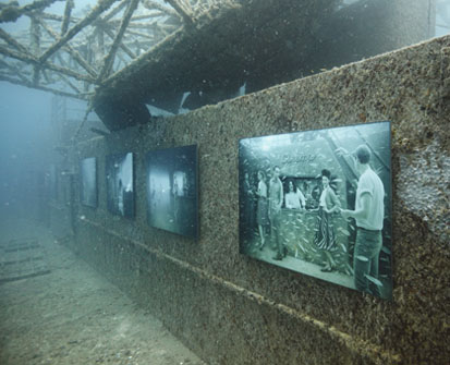 Underwater Photo Gallery