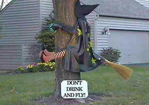 """""""Don't Trick and Fly"""" Halloween Yard Decoration"""