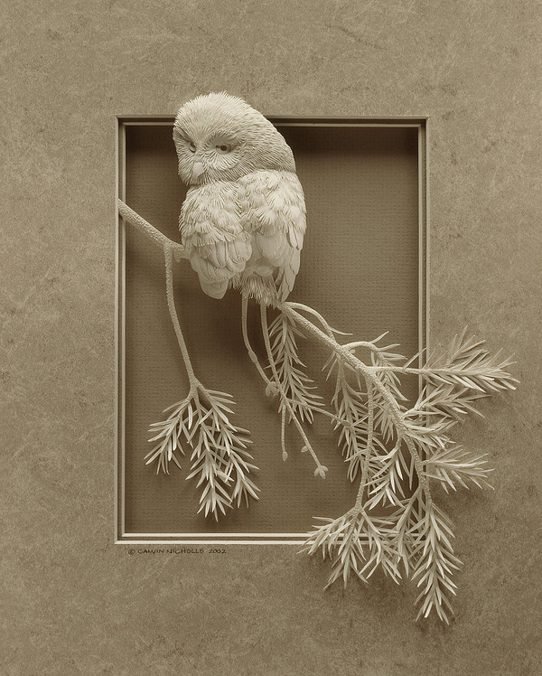 Calvin Nicholls' Incredible Paper Sculptures