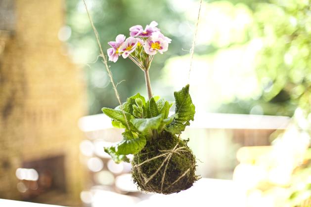 Project: Kokedama String Garden