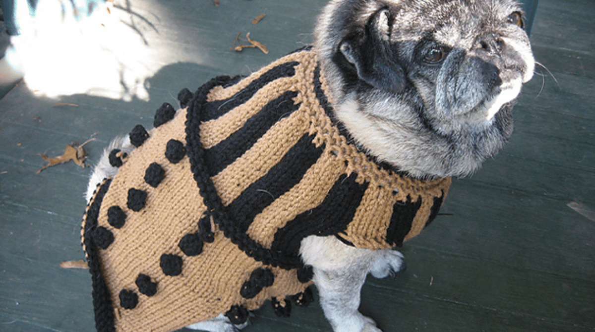 Knit Dalek Dog Sweater Pattern | Make: