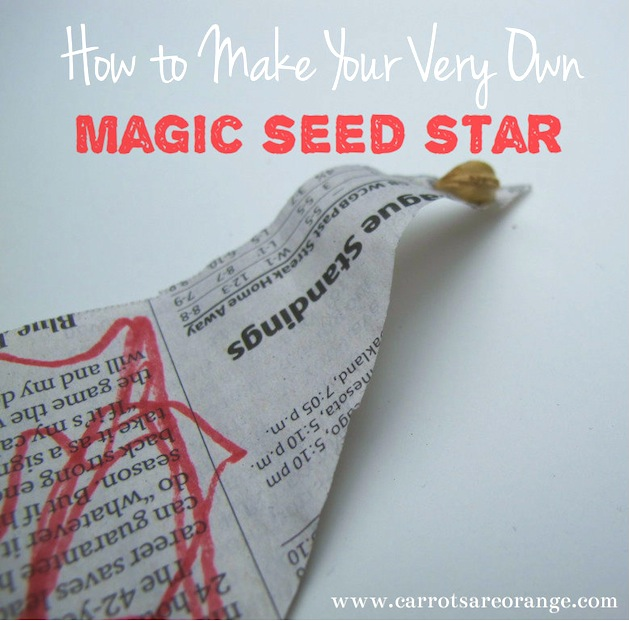 How-To: Paper Seed Star