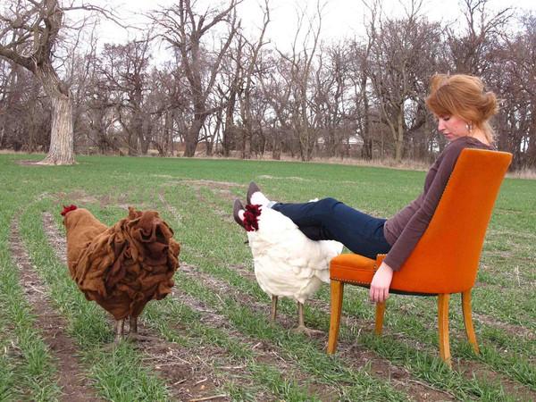 Felted Chicken Footstool