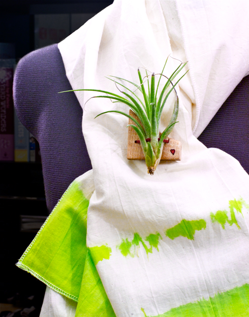Project: Living Air Plant Brooch
