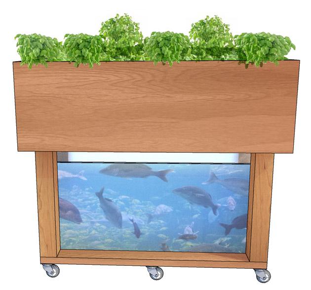 """Hello Garden"" – Making Aquaponics Smart"
