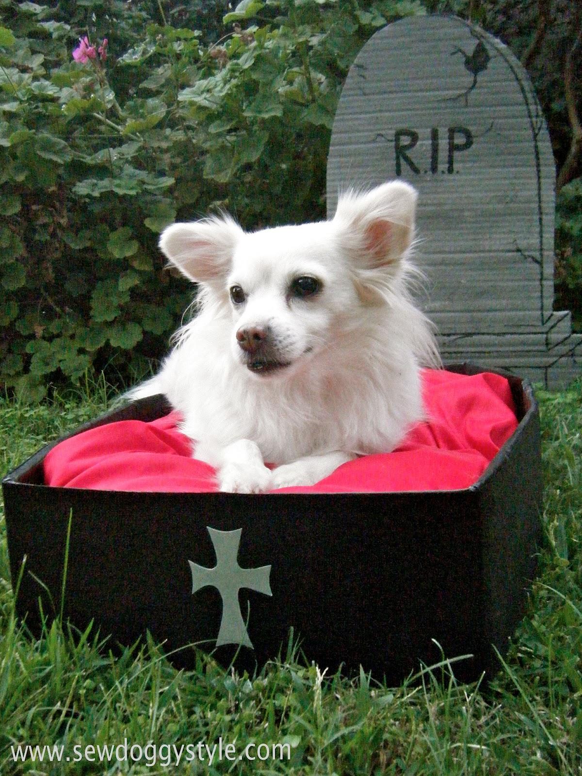 DIY Halloween Pet Beds