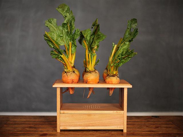 BeetBox Sets Standard for Vegetable-based Instruments