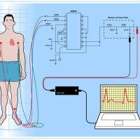 DIY ECG schematic