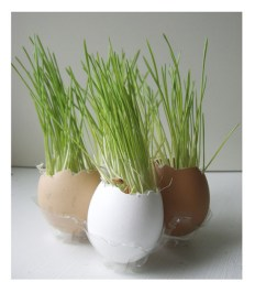 A lovely, understated Easter centerpiece or windowsill decoration.