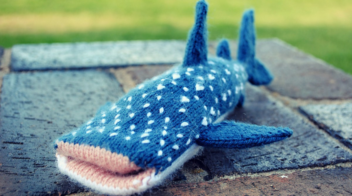 Whale Shark iPhone Cover