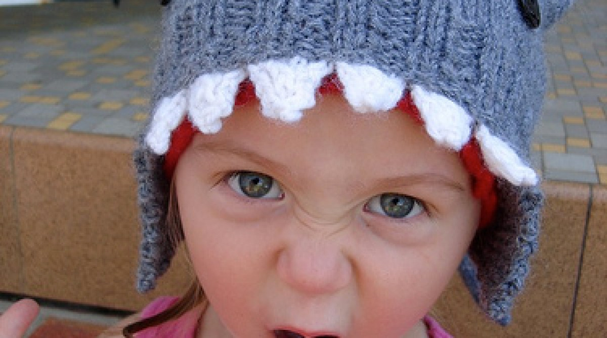 How-To: Knit a Shark Hat