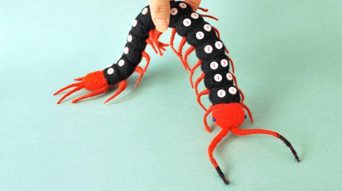 Needle Felted Spotted Centipede