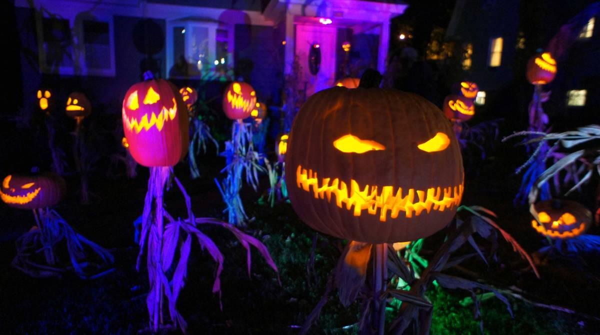 halloween jack o u0027lantern king and his scarecrow minions make