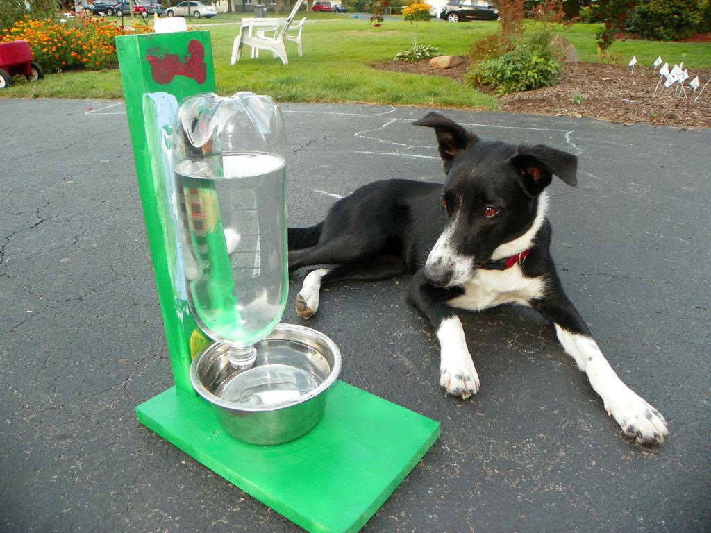 Self-Filling Pet Water Bowl | Make: