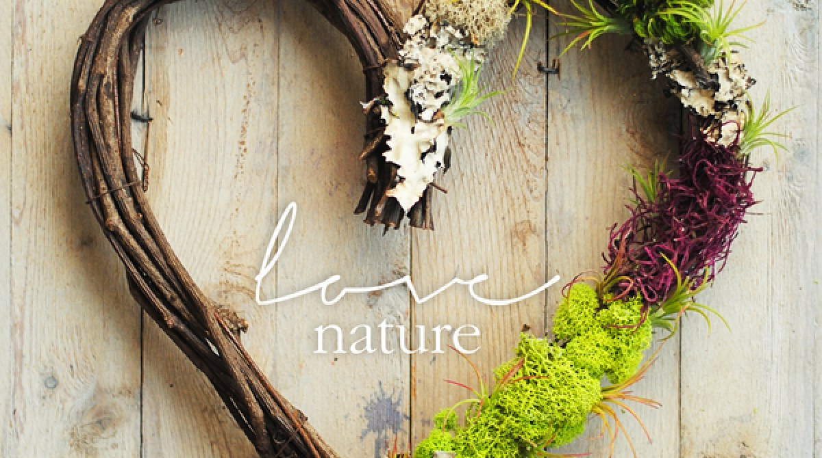 How-To: Valentine's Day Air Plant Wreath