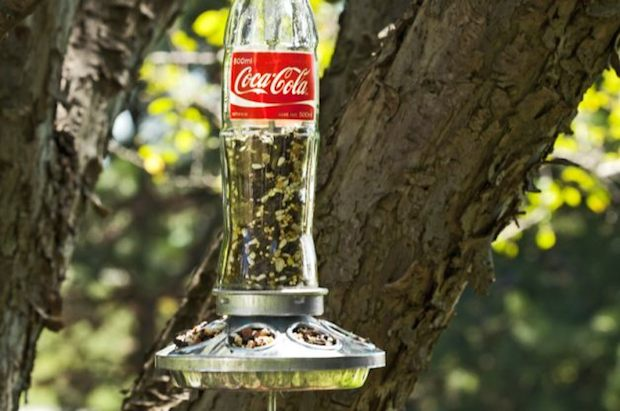 How-To: Soda Bottle Bird Feeder